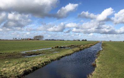 CO2-uitstoot compenseren in de veenweiden? Dat kan straks in Fryslân
